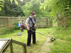 Heavy duty brush cutter called into action