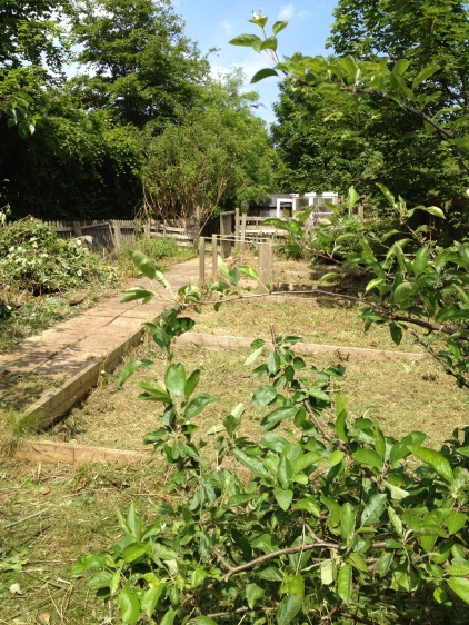 Reclaiming the allotment