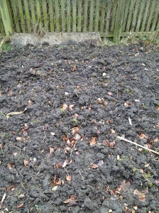 Plot left in clods for the winter
