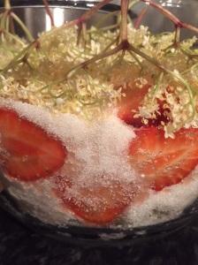 Fruit/sugar combo
