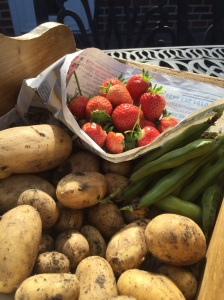 Strawberries, potatoes and broad beans